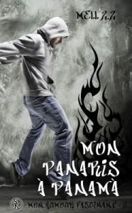 mon-humour-fascinant,-tome-2--mon-panaris-a-panama-684028-250-400